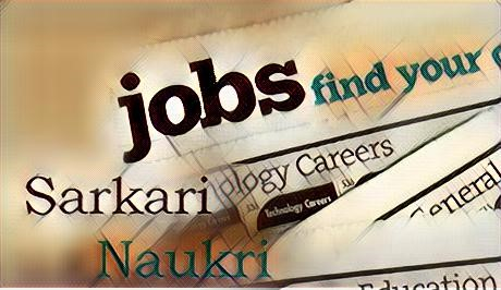 jobs government jobs by Career Horoscope